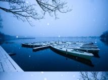 与人山人海的断桥残雪相比,杨公堤沿线的景色就显得低调很多。